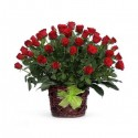 Cos floral 49 trandafiri rosii