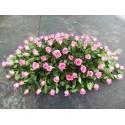 Aranjament funerar 140 trandafiri