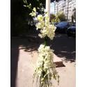 Lumanari de nunta curgatoare orhidee Dendrobium