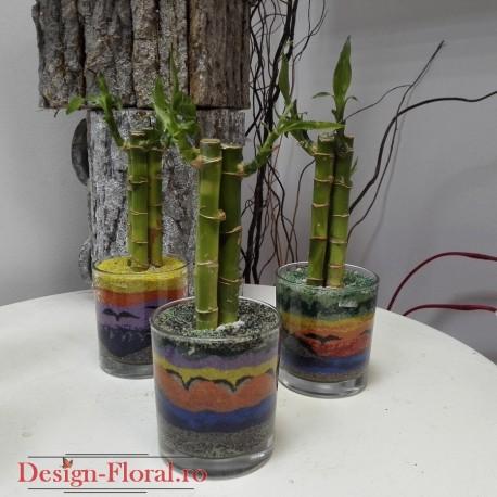 Aranjamente hand-made bambus