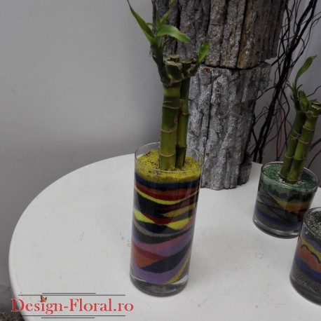Aranjament colorat bambus