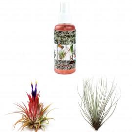 Plante aeriene + Fertilizant