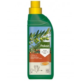 Ingrasamant citrice Pokon 500 ML