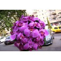 Buchet mireasa Phalaenopsis