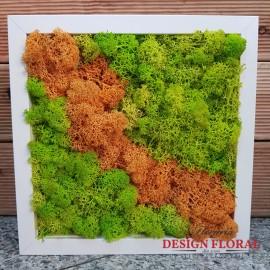 Tablou cu licheni Verde