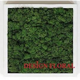 Tablou cu licheni Dark Green