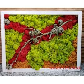 """Tablou cu licheni """"Red Light"""""""