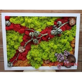 """Tablou cu licheni """"Red Light+"""""""