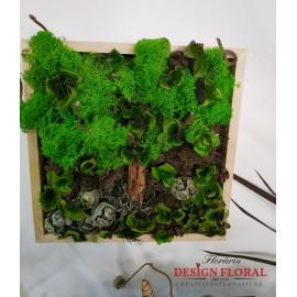 """Tablou cu licheni """" Nature"""""""