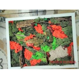 """Tablou cu licheni """" Autumn"""""""