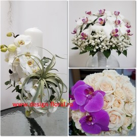 Pachet nunta orhidee si tillandsia