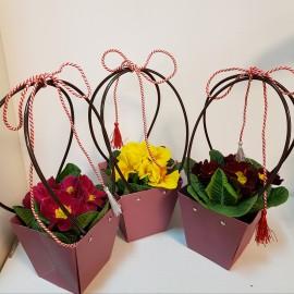 "Aranjament de primavara "" Primula"" 2"
