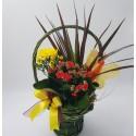 Aranjament cu 3 plante in ghiveci
