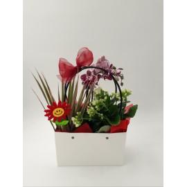 Poseta cu Orhidee
