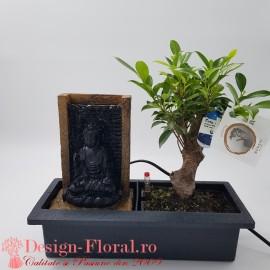 Bonsai Magical Fountain
