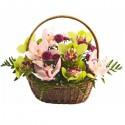 Cos floral din orhidee Cymbidium