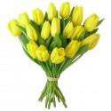 Flori pentru 8 Martie / Ziua Femeii