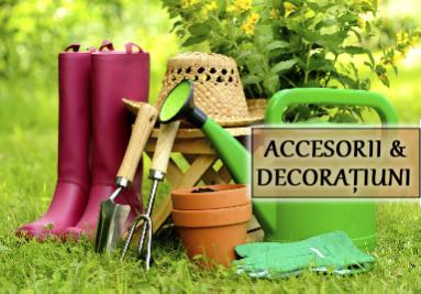 Decoratiuni si accesorii pentru flori si plante